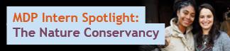 Intern Spotlight: The Nature Conservancy